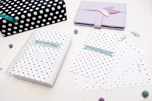 The Personal Assistant Planner